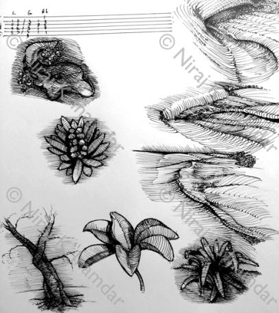 Various studies (2016)