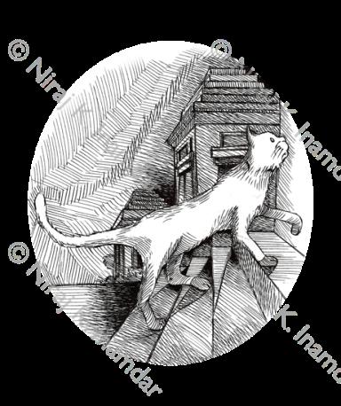 Inside cover illustration (2015)