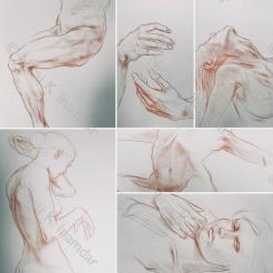 Gli studi della forma (2017)