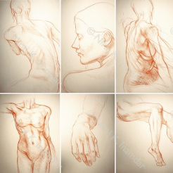 Studi di forma umana (2017)